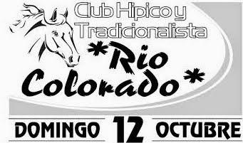 http://turfdelapatagonia.blogspot.com.ar/2014/10/121o-programa-de-carreras-en-rincon-de.html