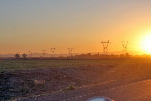 field sunset powerlines