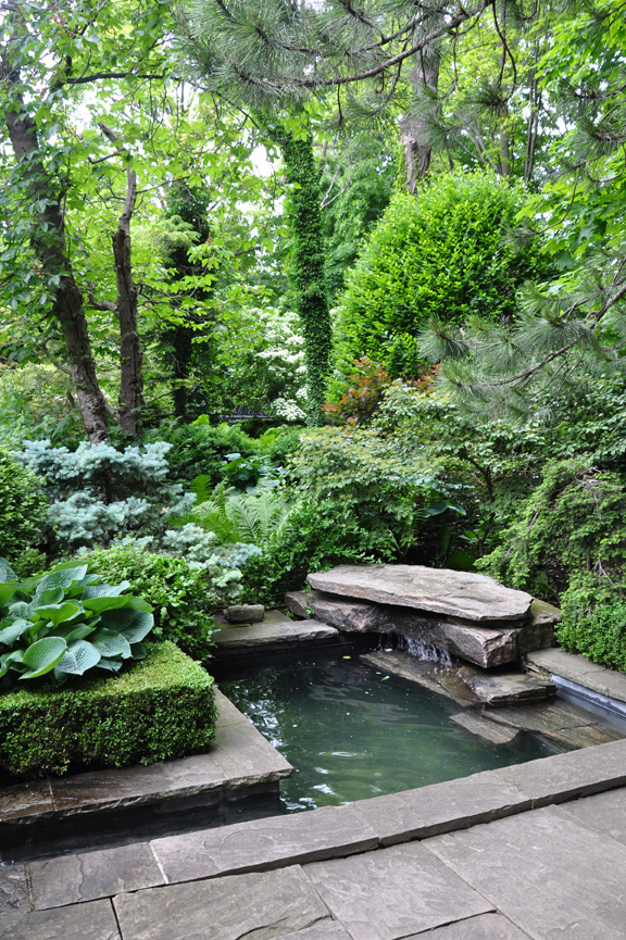 Three dogs in a garden pin ideas small water features for Backyard ponds and water features
