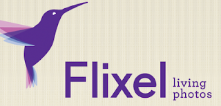 Flixel application