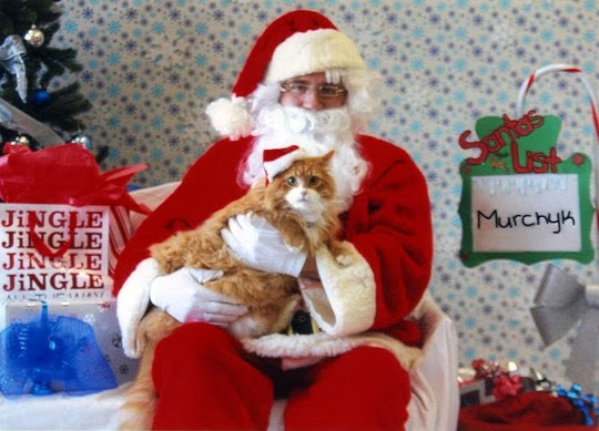 Santa Claus with cat
