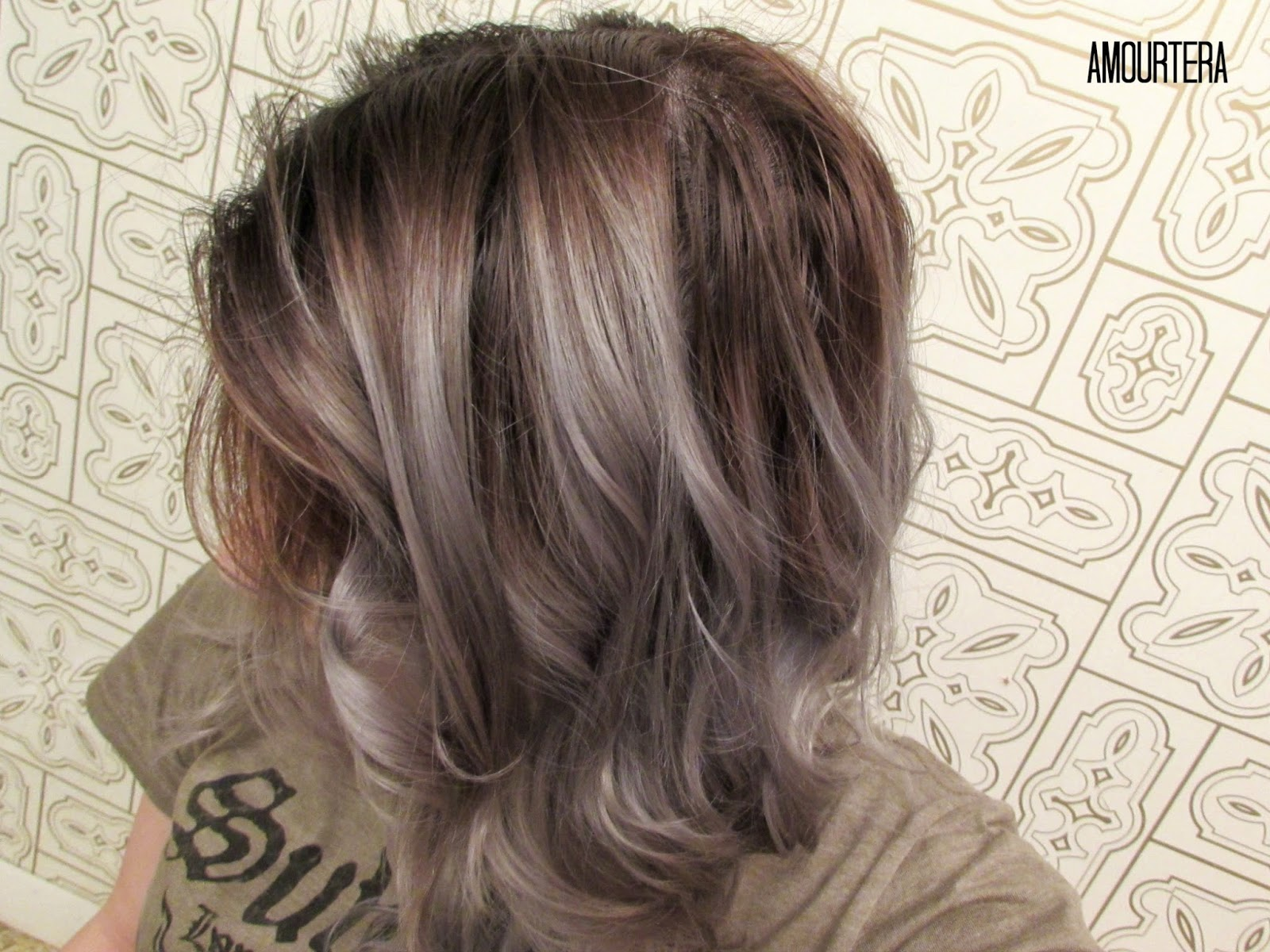 How To Get Silver Gray Hair At Home Amourtera