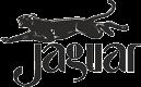 Konkurs z Jaguarem!!!