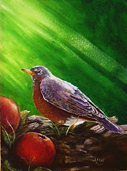 American Robin/ A New Day