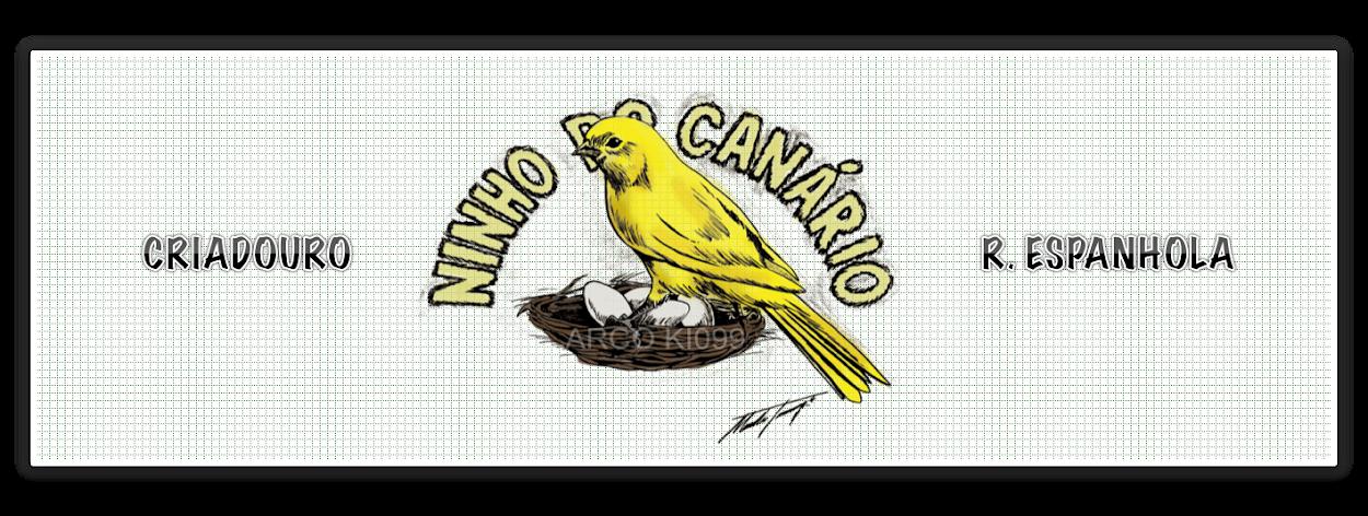 NINHO DO CANÁRIO
