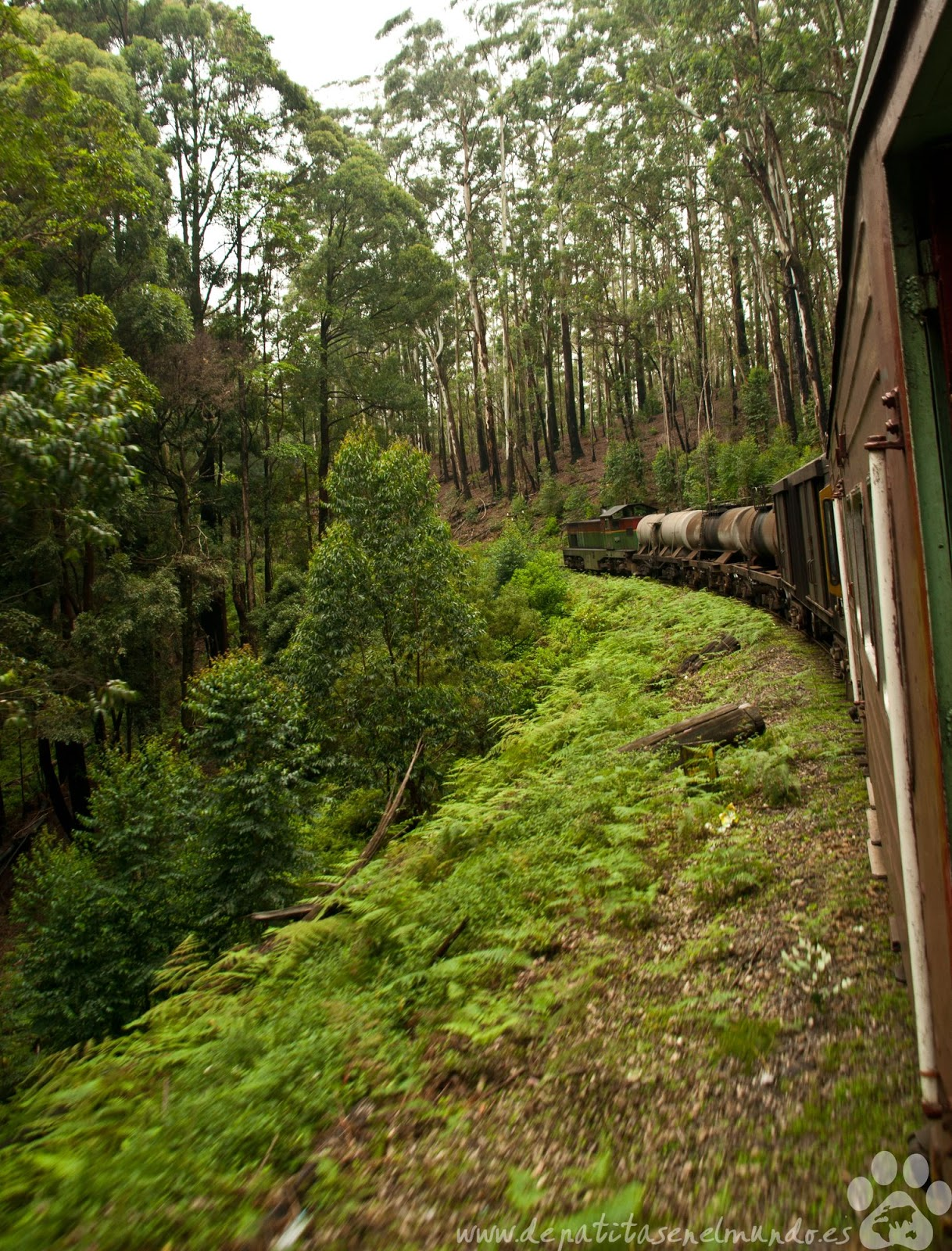 tren de Nuwara Eliya a Haputale
