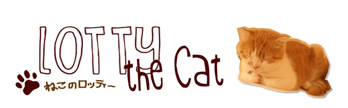 Lotty the Cat