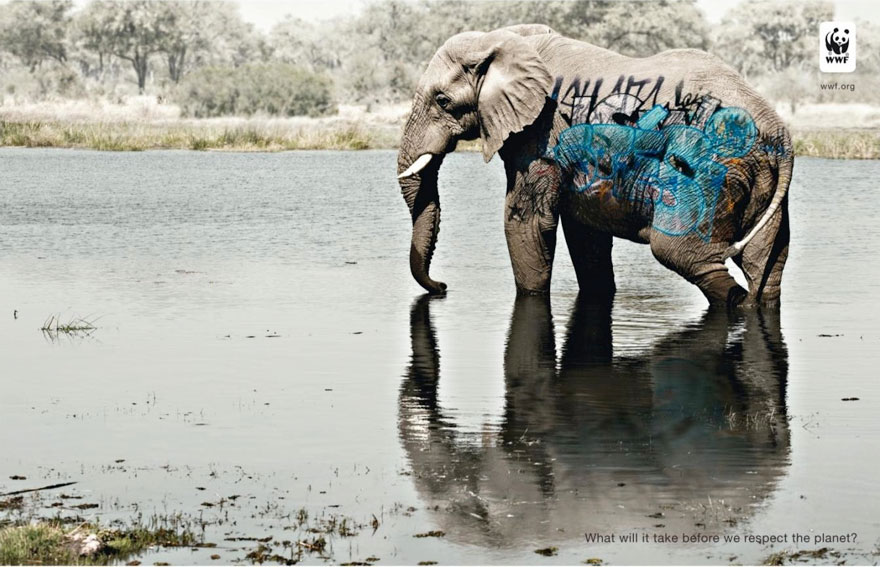 WWF: What Will It Take Before We Respect The Planet?