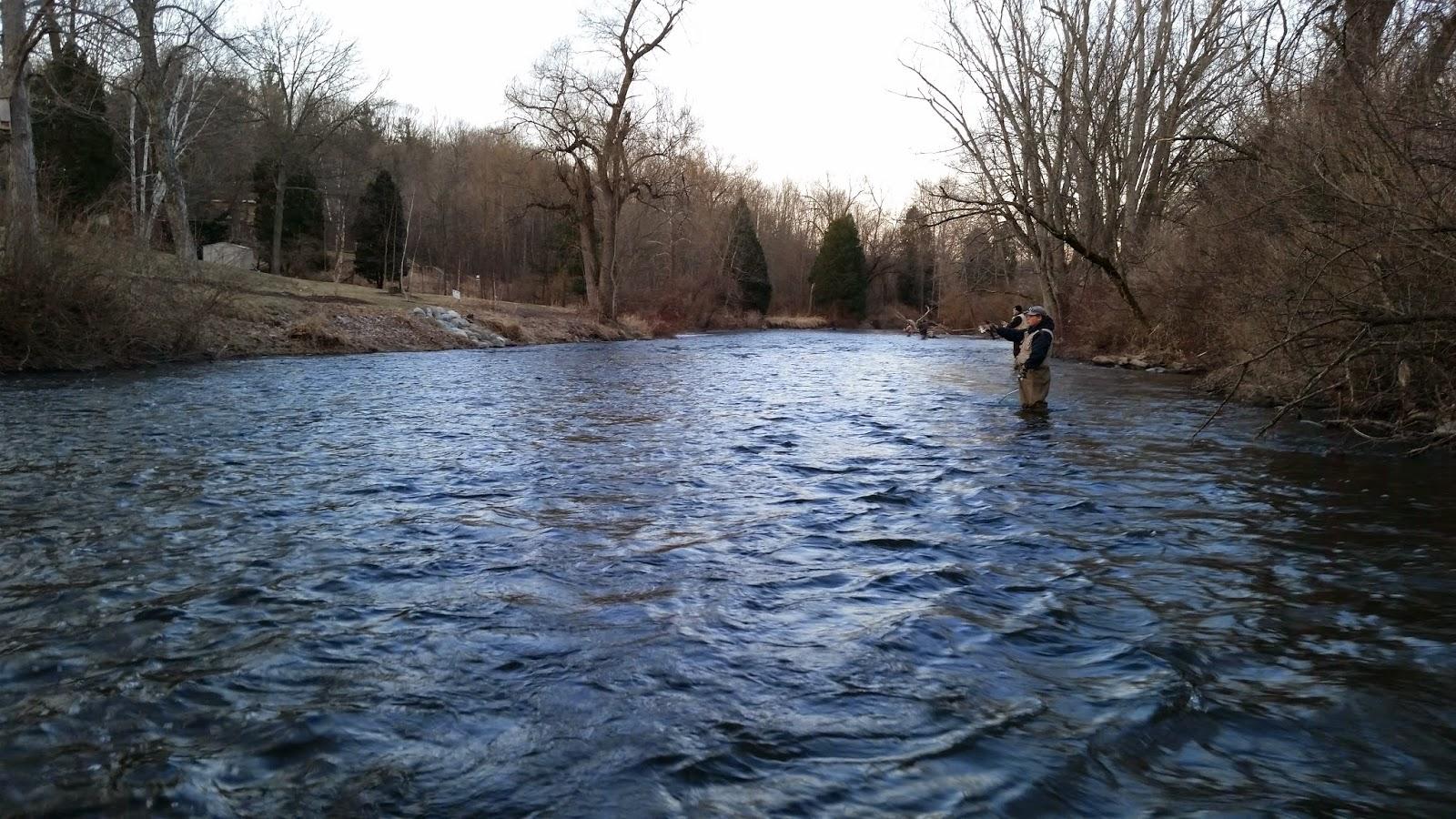 Michigan steelhead report rogue river rockford april for Rogue river fishing report