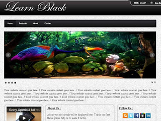 Html Black Template