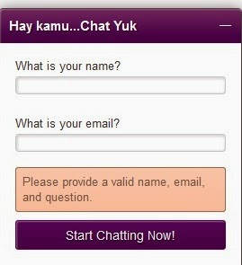 lively chat support online