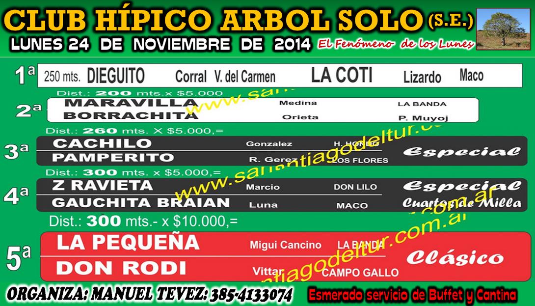 24-11-14-PROG-HIP. ARBOL SOLO