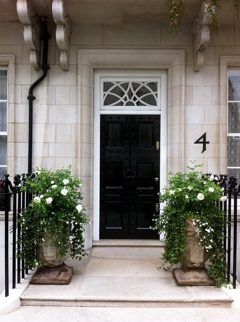 New home design information black entry doors for Potted plants by front door