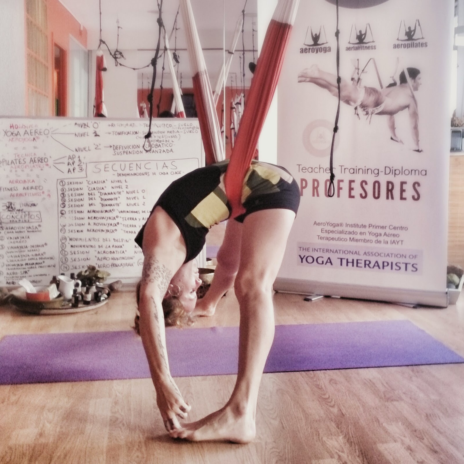 Aerial Yoga Teacher Training USA