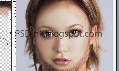 Cara Mengganti Wajah dengan Photoshop