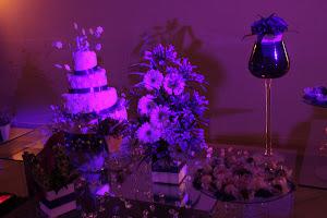 festa Lilas-Roxa