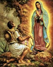 Virgem de Guadalupe - 12/12