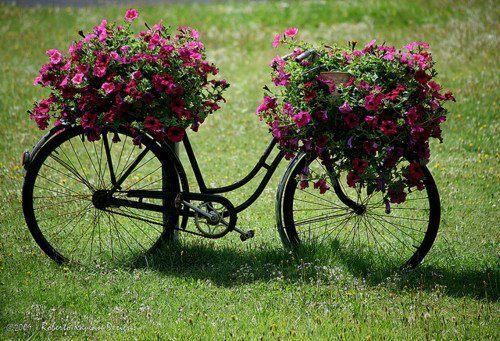 enfeite jardim bicicleta:Suporte para arranjos de flores
