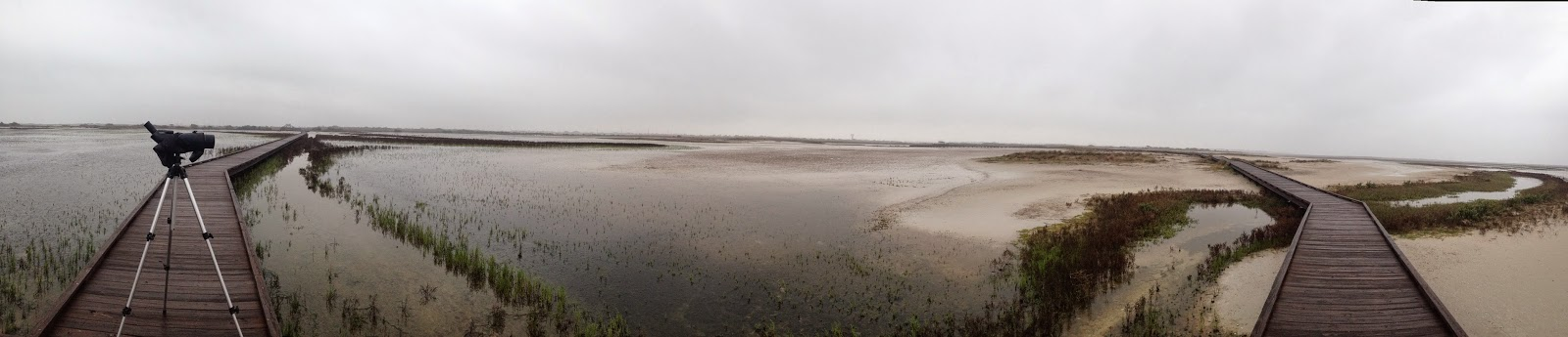 Panoramic view of the boardwalk at Charlie's Pasture