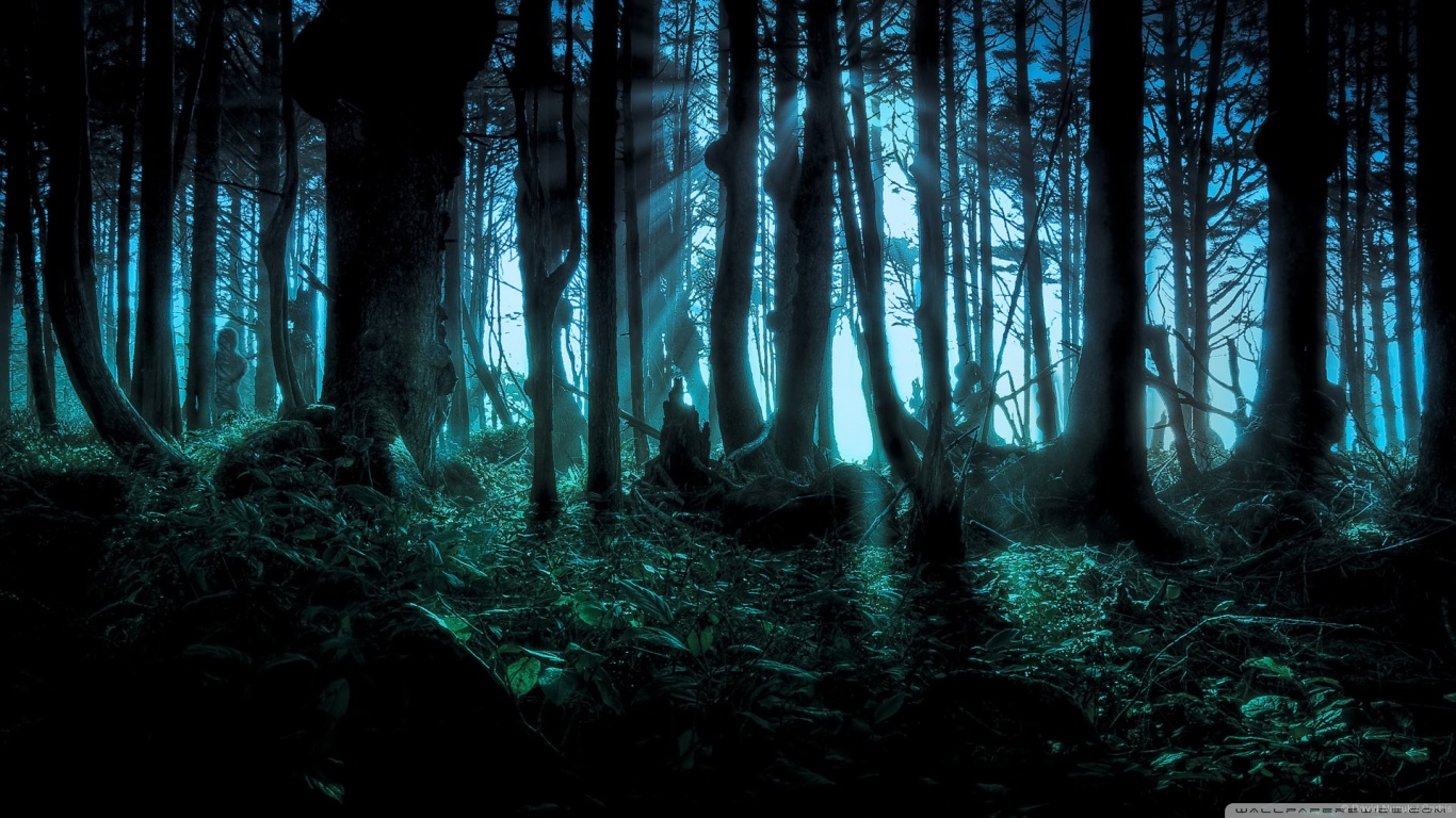 BỮA TIỆC CHÀO MỪNG EVENT MY STERIOUS 2013!! Mysterious_forest-wallpaper-1366x768