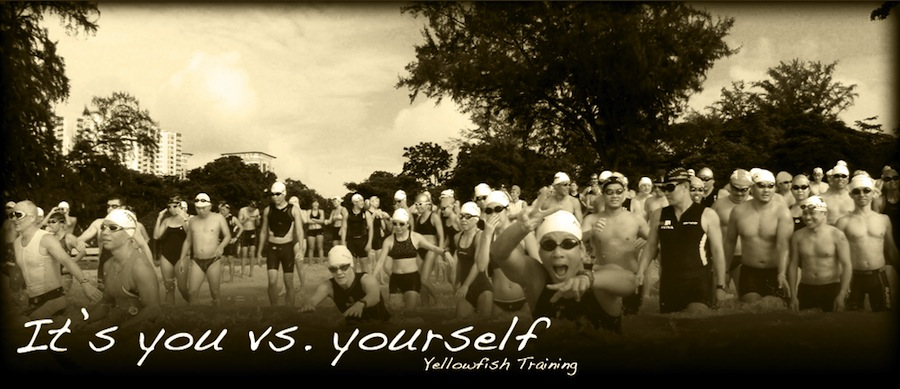 Yellowfish Training - It's You vs. Yourself