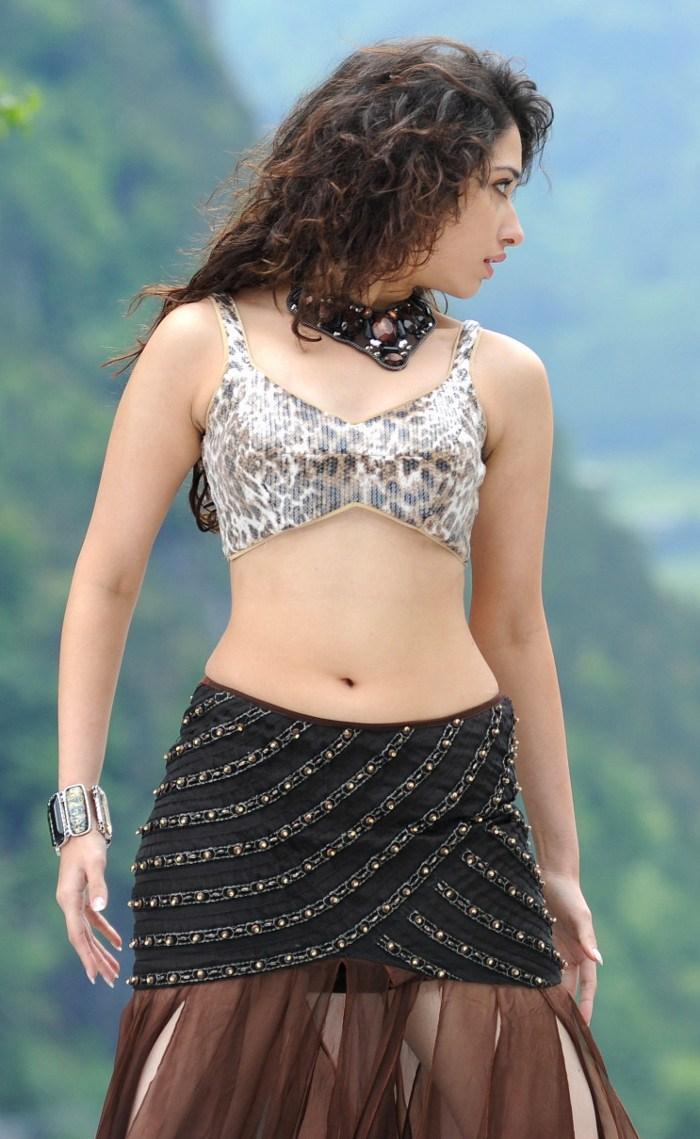 , Tamanna Hot Stills From Badrinath Movie
