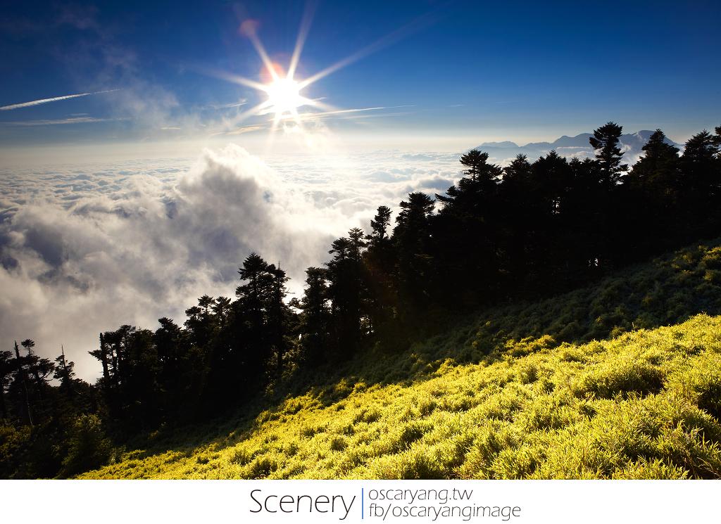 合歡山秋季風景24耐:星軌 夜景 日出 芒草 藍天白雲 夕陽 雲海