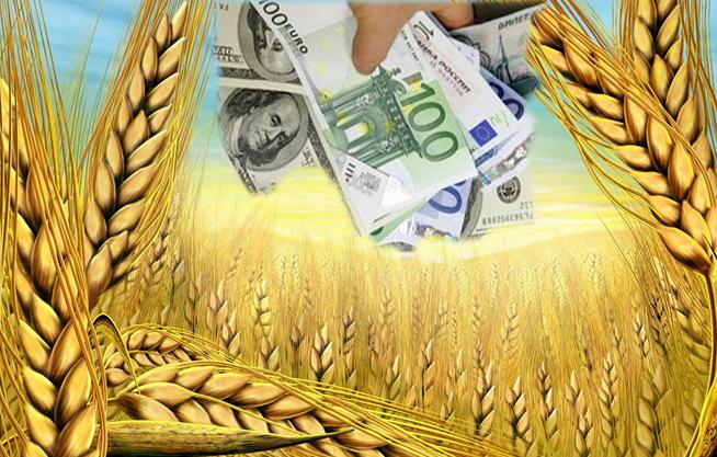 Минсельхоз: Цены на зерно растут из-за нестабильности на Украине