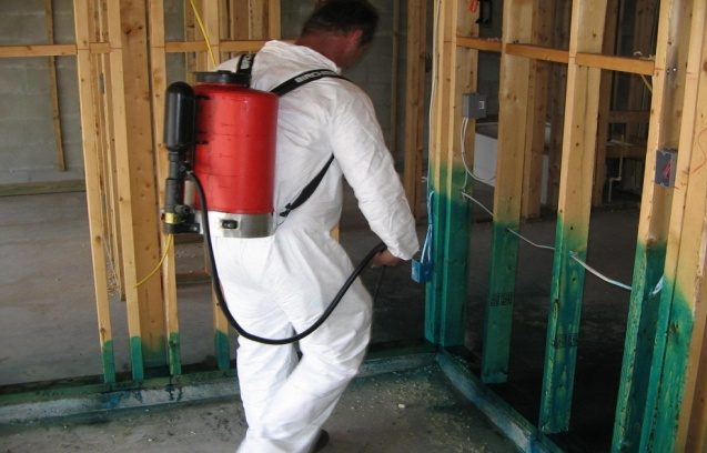 Something interesting about Average Cost For Termite Treatment