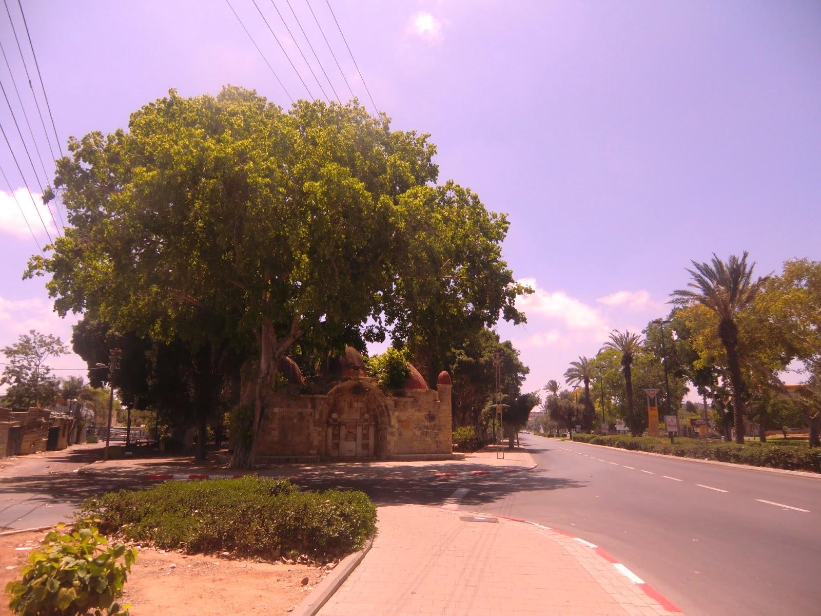 Sabil-Abu-Nabut