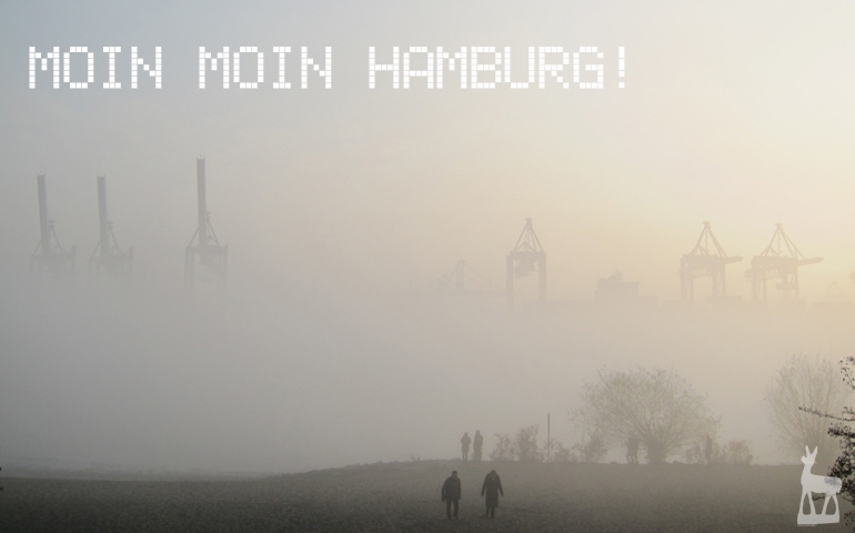 Hamburg im Nebel Foto: Rudolf Strobl