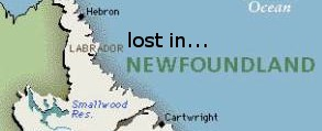 lost in newfoundland
