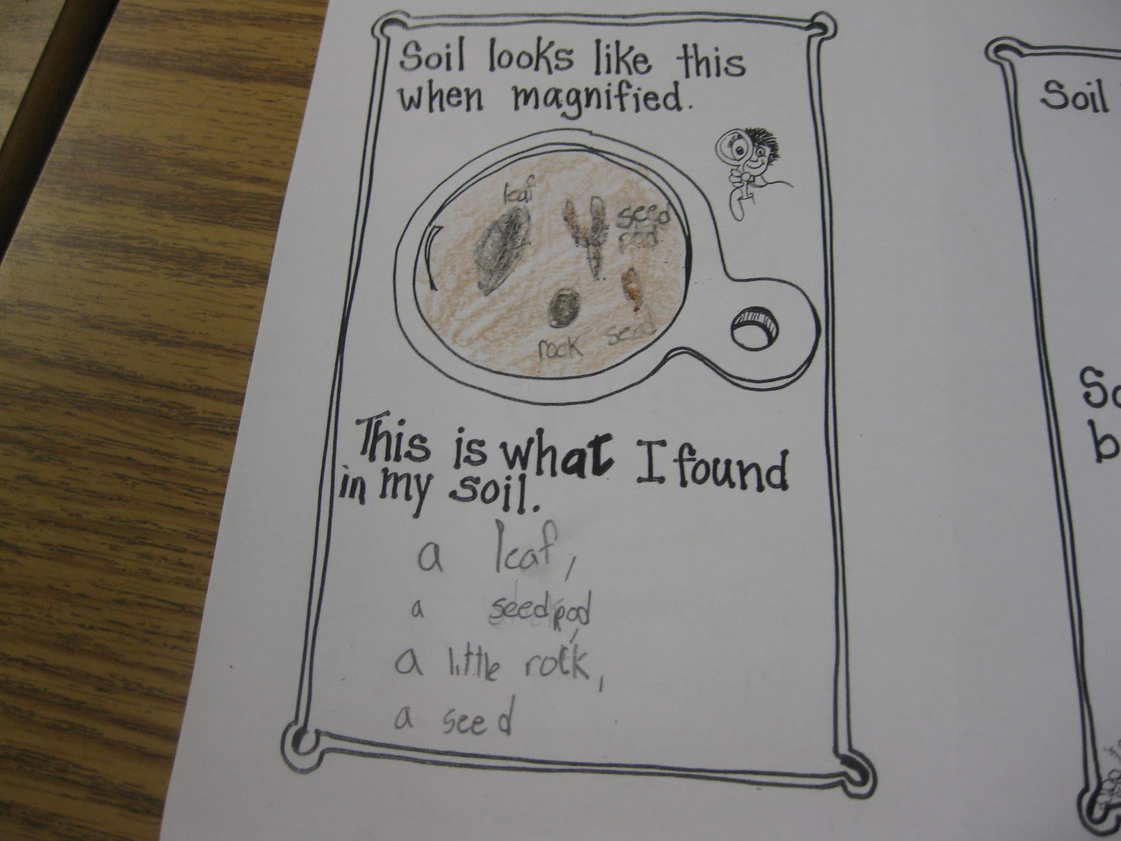 Third grade thinkers science investigation a soil study for Words to describe soil