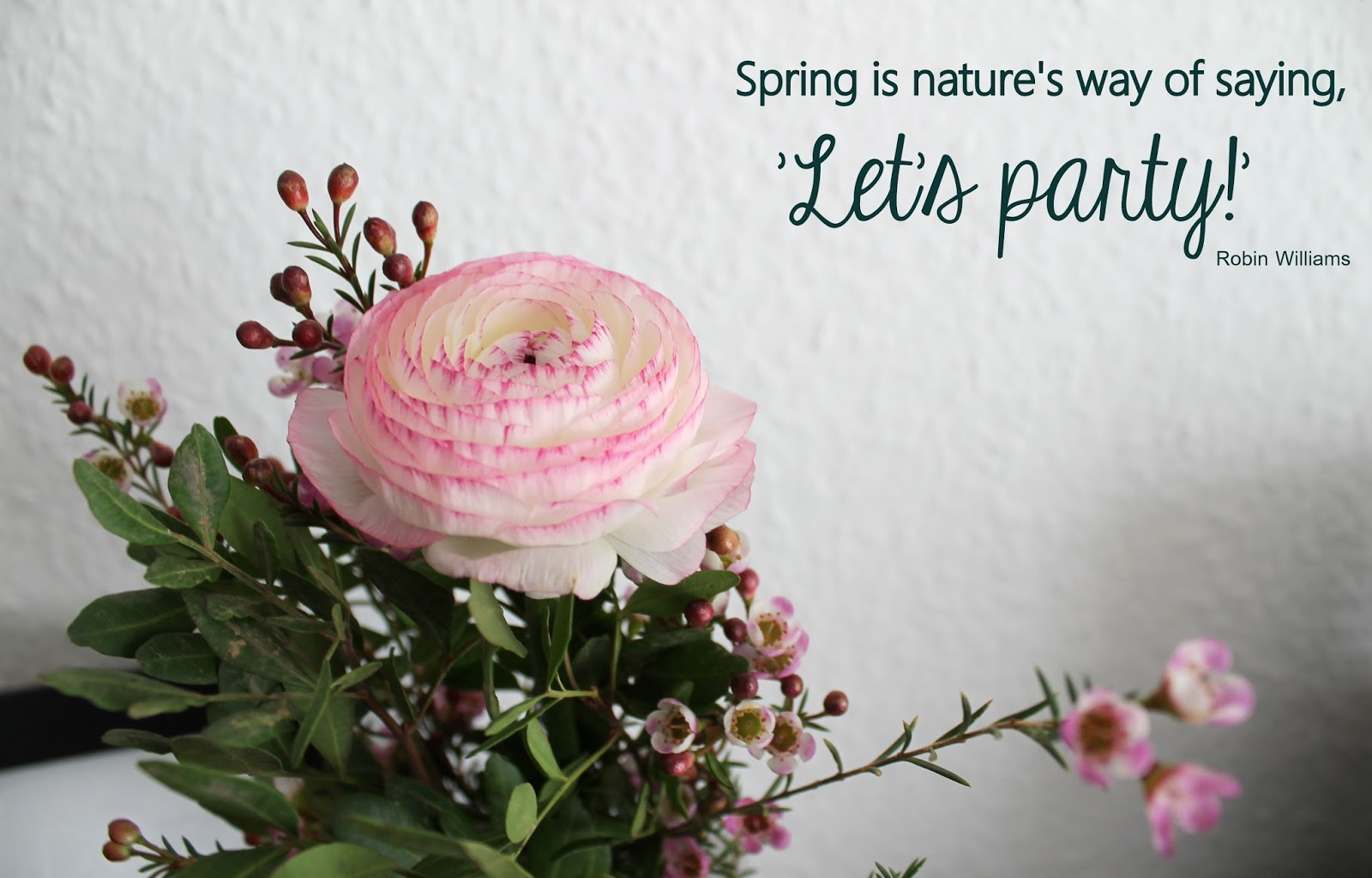 spring is nature`s way of saying let`s party