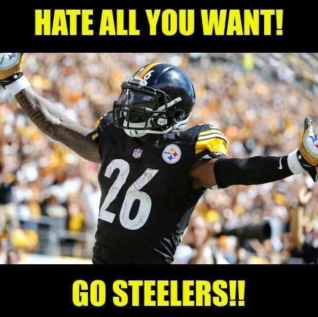 hate%2Ball%2Byou%2Bwant!%2Bgo%2Bsteelers!! 22 meme internet hate all you want! go steelers!! steelers
