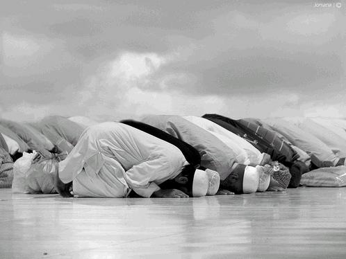 وزيرة الثقافة الجزائرية خليدة مسعودي الصلاة أكبر إهانة للإنسان العداء للإسلام الحج أموال الحج استهزاء بالدين