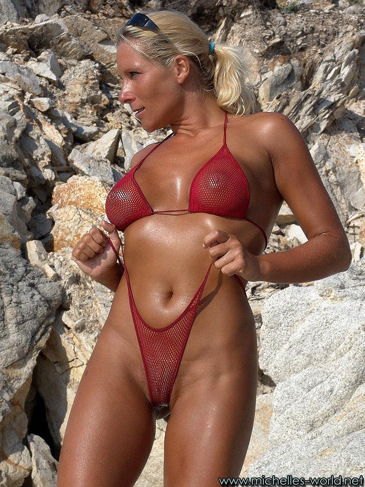 Palin bikini photo gun