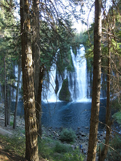 View of Burney Falls framed by trees.