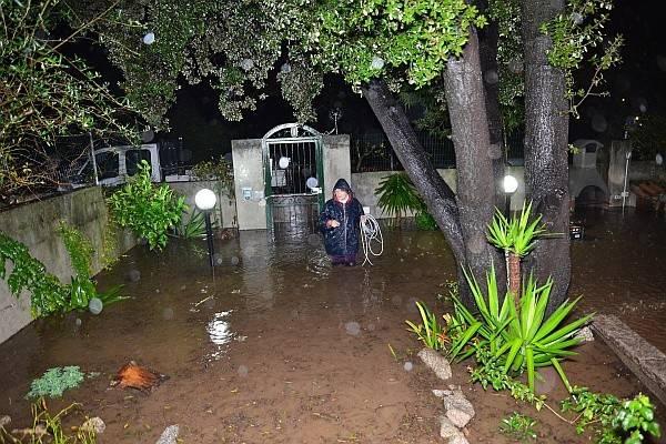 Como afecta las inundaciones tu jard n y como controlarlo for Como evitar que salga hierba en el jardin