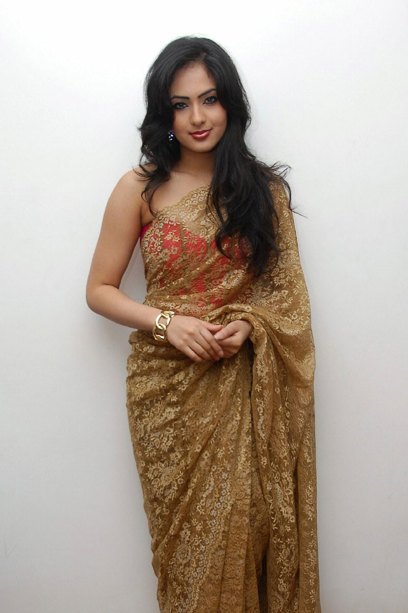 nikesha patel saree stills