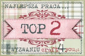 TOP 2 w craft4you