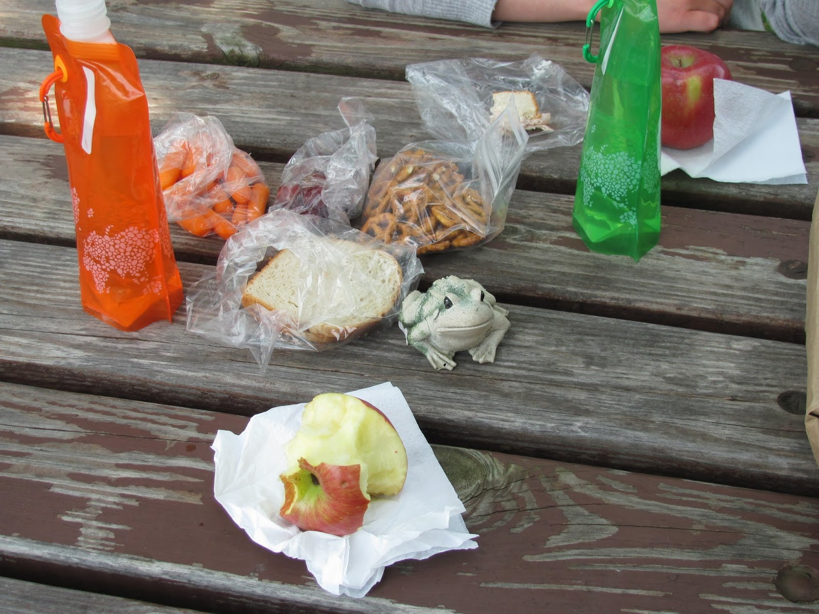 Frog poses with our road lunch eaten at a rest stop in Illinois.  Sandwiches, fruit, carrots, and pretzels are on the menu