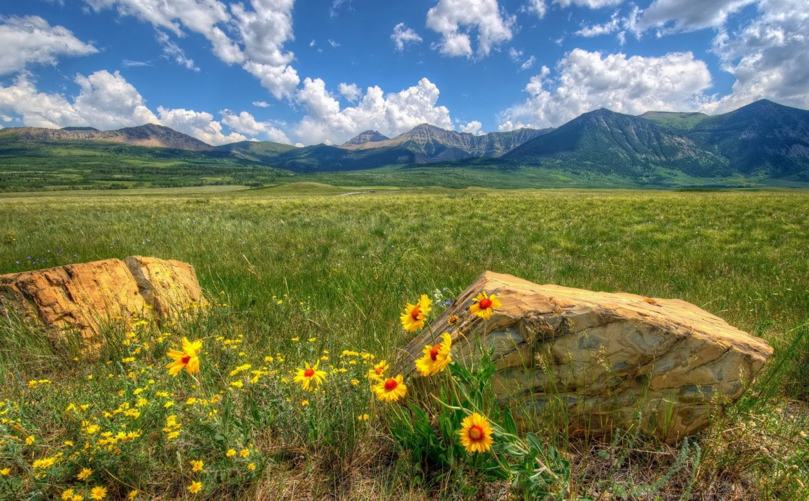 Im genes arte pinturas paisajes naturales im genes - Imagenes de paisajes ...