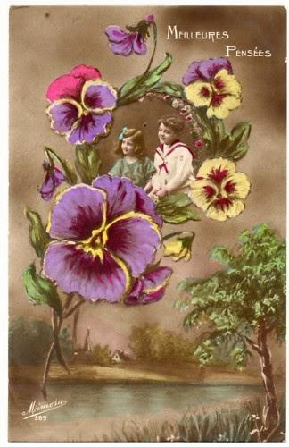 Bellísimas Imágenes de Plantas, Flores y Arboles