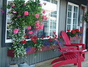 Ocean View decks with lots of beautiful flowers