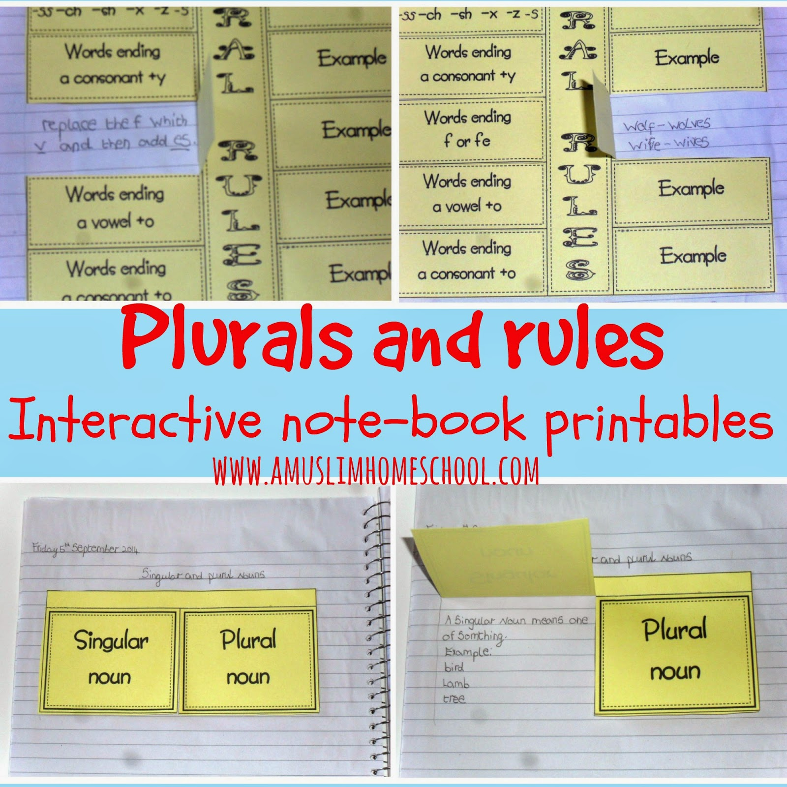 plural rules printable worksheets for interactive note books