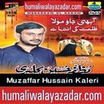 http://www.humaliwalayazadar.com/2014/10/muzafar-hussain-kalari-nohay-2015.html