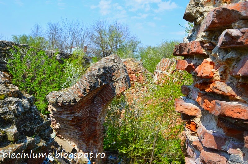 Ruinele castelului din Dobreni