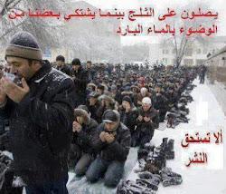 الإسلام في خير
