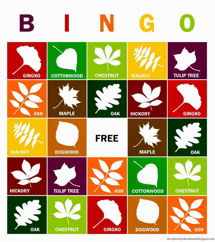 free bingo games just for fun